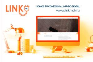 mejor empresa de marketing digital en Aguascalientes